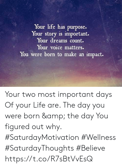 Life, Voice, and Dreams: Your life has purpose.  Your story is important.  Your dreams count.  Your voice matters.  You were born to make an impact. Your two most important days  Of your Life are. The day you were born & the day You figured out why.  #SaturdayMotivation #Wellness  #SaturdayThoughts #Believe https://t.co/R7sBtVvEsQ