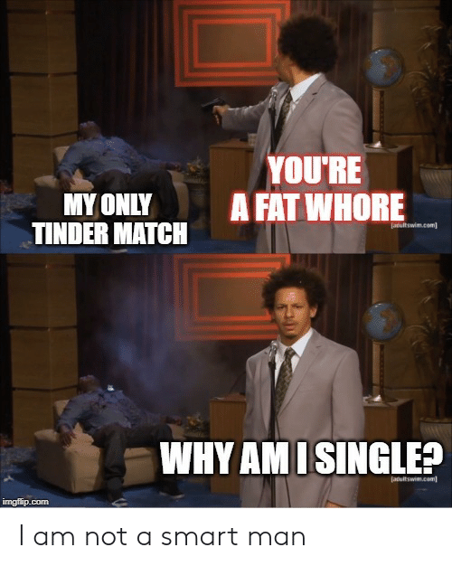 Tinder, Match, and Fat: YOU'RE  A FAT WHORE  MYONLY  TINDER MATCH  atultswim.com  WHY AM ISINGLE?  Jadultswim.com  imgflip.com I am not a smart man