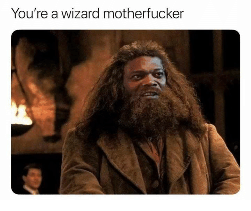 Memes, 🤖, and Wizard: You're a wizard motherfucker