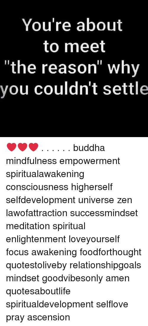"""Memes, Buddha, and Focus: You're about  to meet  """"the reason"""" why  you couldn't settle ❤️❤️❤️ . . . . . . buddha mindfulness empowerment spiritualawakening consciousness higherself selfdevelopment universe zen lawofattraction successmindset meditation spiritual enlightenment loveyourself focus awakening foodforthought quotestoliveby relationshipgoals mindset goodvibesonly amen quotesaboutlife spiritualdevelopment selflove pray ascension"""