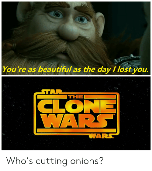 onions: You're as beautiful as the day I lost you.  STAR  THE  CLONE  WARS  WARS Who's cutting onions?