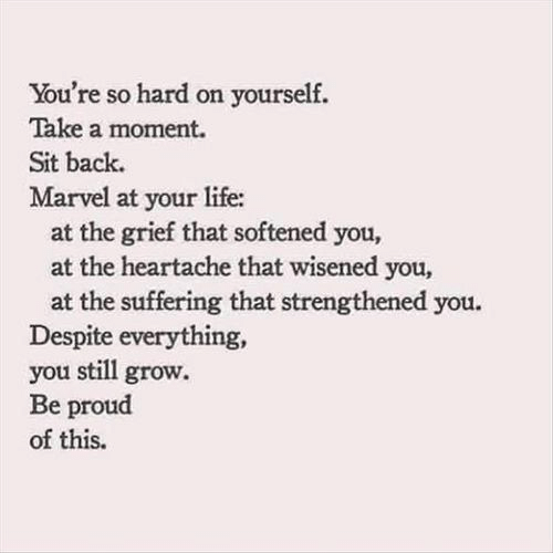 Life, Marvel, and Proud: You're so hard on yourself.  Take a moment.  Sit back.  Marvel at your life:  at the grief that softened you,  at the heartache that wisened you,  at the suffering that strengthened you.  Despite everything,  you still grow.  Be proud  of this.