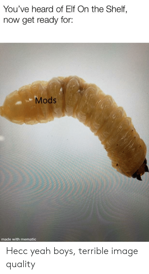 Elf, Elf on the Shelf, and Yeah: You've heard of Elf On the Shelf,  now get ready for:  Mods  made with mematic Hecc yeah boys, terrible image quality