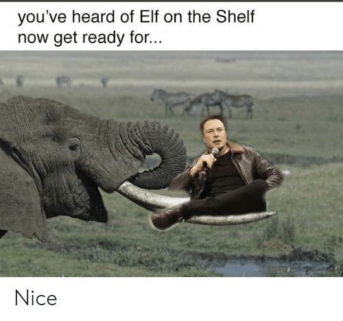 Elf, Elf on the Shelf, and Nice: you've heard of Elf on the Shelf  now get ready for... Nice