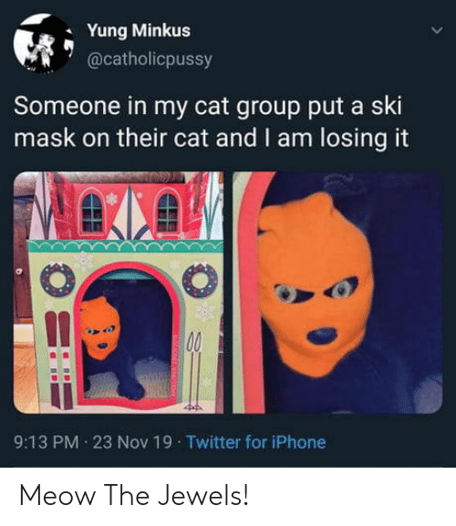 Yung: Yung Minkus  @catholicpussy  Someone in my cat group put a ski  mask on their cat and I am losing it  00  9:13 PM 23 Nov 19 Twitter for iPhone Meow The Jewels!