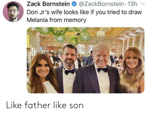 Looks Like: Zack Bornstein  @ZackBornstein 13h  Don Jr's wife looks like if you tried to draw  Melania from memory Like father like son