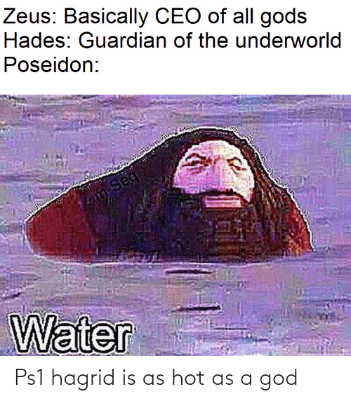 gods: Zeus: Basically CEO of all gods  Hades: Guardian of the underworld  Poseidon:  m-Seq  Water Ps1 hagrid is as hot as a god