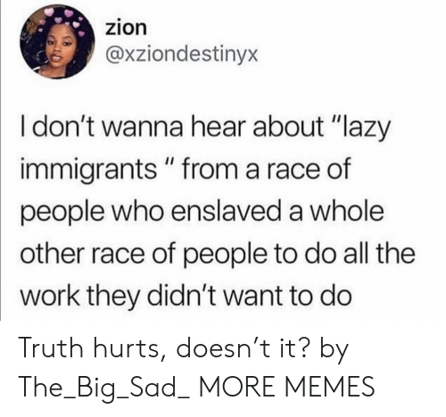 """Dank, Lazy, and Memes: zion  @xziondestinyx  I don't wanna hear about """"lazy  immigrants """" from a race of  people who enslaved a whole  other race of people to do all the  work they didn't want to do Truth hurts, doesn't it? by The_Big_Sad_ MORE MEMES"""